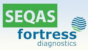 Seqas_Fortress